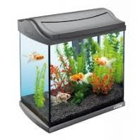 Tetra Black Aqua Art Aquarium 60 litres